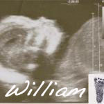 williamsscan small copy